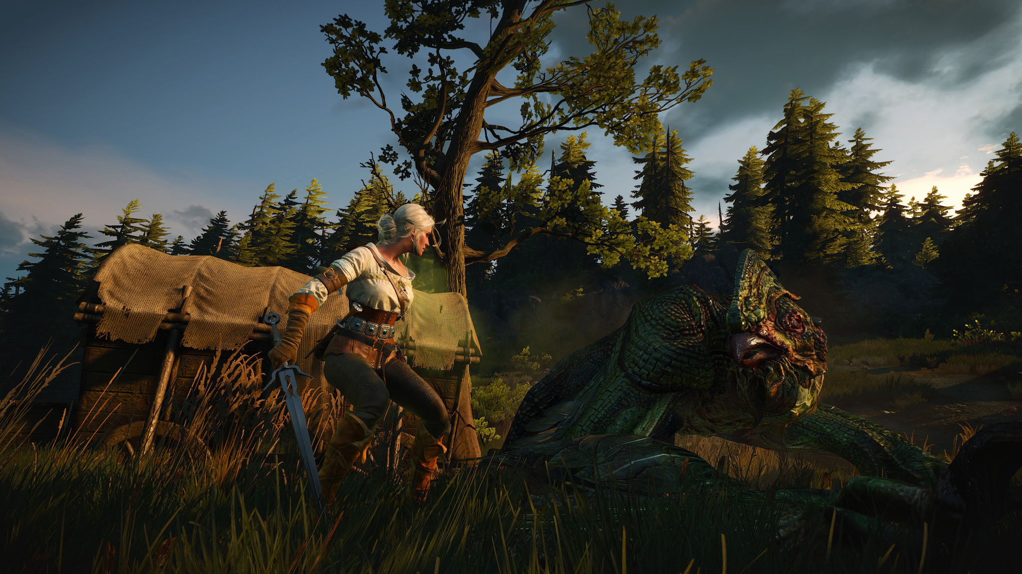 TheWitcher304